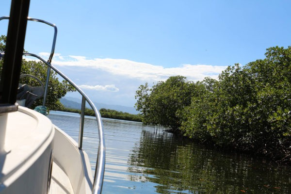 Balade dans la baie - Eden Jungle Lodge - Bocas del Toro - Panama