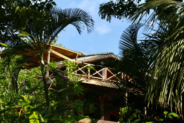 Eden jungle lodge - Bocas del Toro - Panama