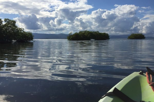 Balade en Kayak EJL Bocas del Toro Panama